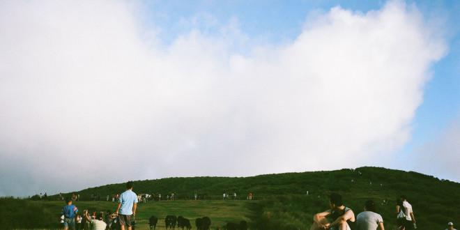 陽明山國家公園-擎天崗