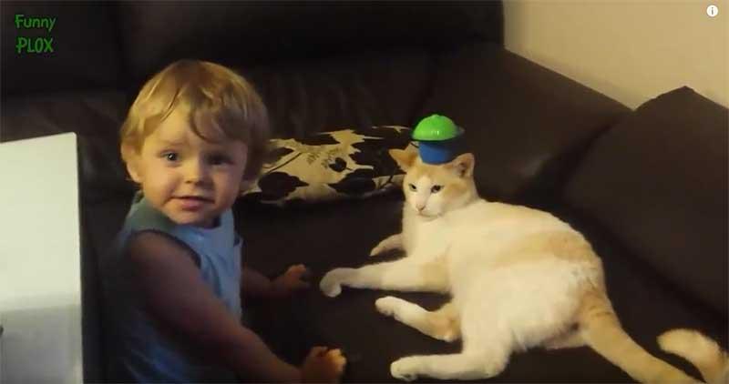 寶寶:媽媽你看~頂天立地的貓弟弟!