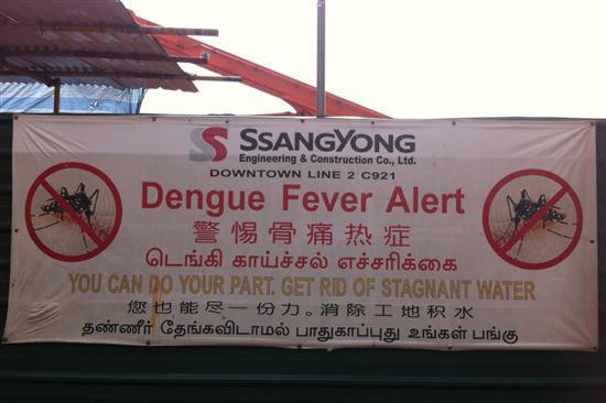dengue_singapore