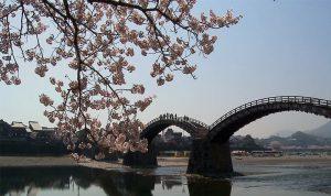 錦帶橋位於日本山口縣岩國市,在1673年由第三代岩國藩藩主吉川廣嘉所建的木造橋樑,同時擁有日本「三大名橋」和「三大奇橋」的頭銜。(翻攝自youtube)