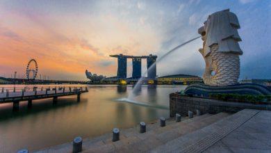 Photo of 超省錢新加坡自由行 好吃好玩大推薦