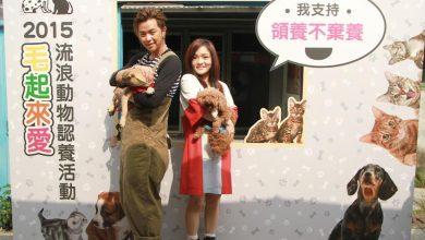 Photo of 毛起來愛!徐佳瑩、黃鴻升邀你領養代替購買