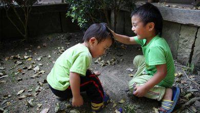 Photo of 世界兒童人權日  一個孩子都不能少