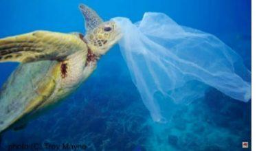 "Photo of 嚇!海洋垃圾""比魚多"" WEF:2050年恐成真"