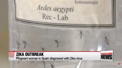 Photo of 歐洲首例   西班牙孕婦感染茲卡病毒
