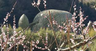王文志與當地居民合力完成作品「橄欖之夢」,作品造形構想來自小豆島當地特產橄欖之果實形狀,完全融入當地梯田景觀。(圖片來源:文化部)