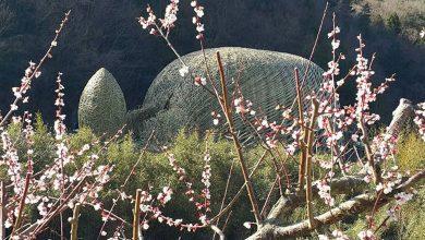 Photo of 瀨戶內藝術祭20號開幕 台創作<種子船>大受讚嘆