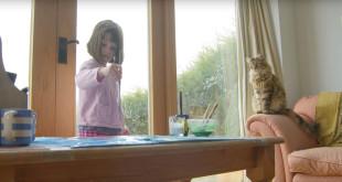 英國6歲的自閉症小女孩艾莉絲,因為貓咪的陪伴漸漸卸下心防。(翻攝網路)