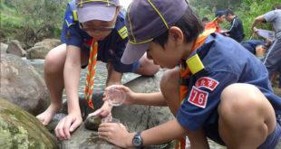 小朋友好奇的探索著溪流裡的生態秘密。〈圖片來源:台北市政府提供〉