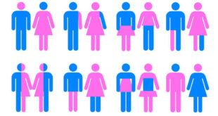 學生可以依照心理狀態自選性別,當然性別也可是流動的。(圖片摘自網路)