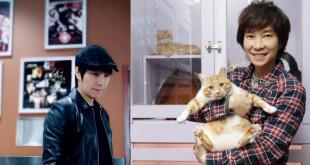 邰正宵兩歲起家裡就開始養流浪貓,從小在貓群中長大。(合成照,翻攝網路、邰正宵臉書)