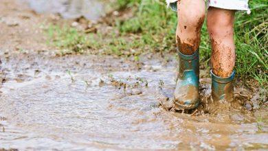 Photo of 體驗教育從小開始 感動源自腳掌下的泥巴