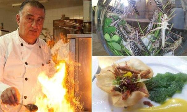 巴森表示,愈來愈多人願意嚐試吃蝗蟲。(圖片來源:BBC)