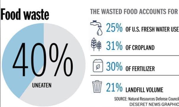 NRDC數據顯示,人類浪費的不僅僅是食物,還有水、能源等相關資源。(圖片來源:deseretnews)