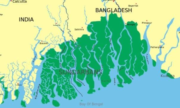 世界最大規模的紅樹林三角洲,科學家證實最快25年內會消失!(圖片來源:wikimedia)