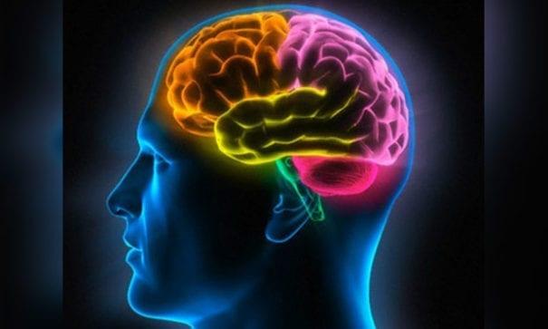 醫學研究證實,色情片對大腦有一定程度的傷害。(圖片來源:dailymail)