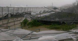 這次風災台東聖母醫院災情嚴重,大玻璃被砸破,天花板吹落,院區大樹倒塌,屋頂掀起,房舍灌水,需各界援助重建。(圖片來源:台東聖母醫院)