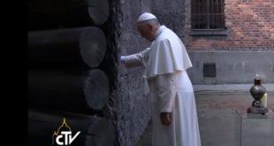 教宗在數千名集中營囚犯遭槍殺的「死亡之牆」(Death Wall)前撫牆祈禱。(翻攝網路)