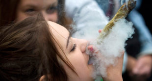 科技巨頭微軟上個月宣布投資大麻巿場。(圖片來源:zenfs)