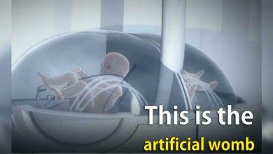 Photo of 人造子宮將成真?!專家反對:懷孕是神聖過程!
