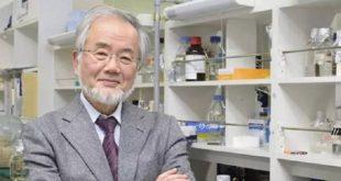 日本東京工業大學榮譽教授大隅良典,因解析細胞「自噬作用 」機制貢獻良多,榮獲諾貝爾醫學暨生理學獎。(圖片來源/翻攝自大隅良典Twitter )