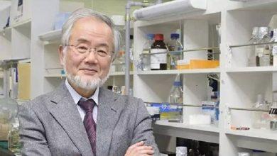 Photo of 鑽研細胞自噬助防癌 日學者大隅良典獲諾貝爾生醫學獎