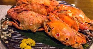 勝喜日式創作料理店。10月正值螃蟹季,店內推出新鮮當季秋蟹只要99元優惠。(照片由店家提供)