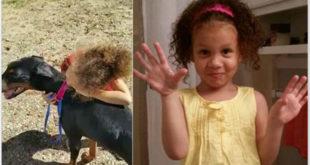 4歲女童麥妮爾慘遭剛飼養的杜賓犬咬死。(圖片來源:http://www.dailymail.co.uk/)