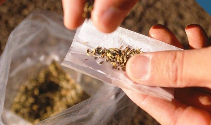 娛樂用大麻合法化已於加州公投通過。(圖片來源/翻攝自YouTube)