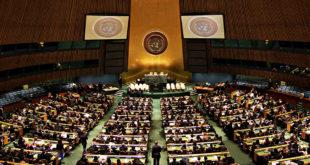 聯合國日前決議拒絕全面式性教育強行進入各國。(圖片摘自:catholiclane)