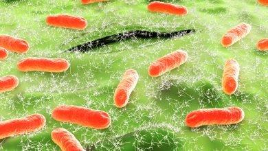 Photo of 沒有抗生素可用 耐藥「超級細菌」恐怕擋不住