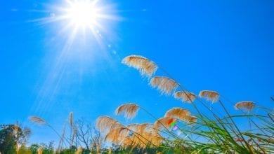 Photo of 冬季憂鬱症來襲! 專家:多曬太陽