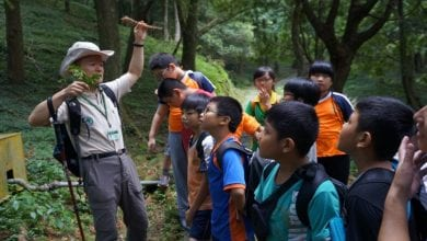 Photo of 避暑何處去?沁夏的森林浴之旅 ─ 東眼山國家森林遊樂區