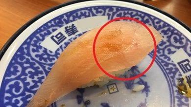 Photo of 知名連鎖壽司店生魚片竟有蟲蟲蠕動?網驚:不是第一次出包!