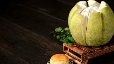 Photo of 柚子別和這些藥搭著吃! 小心毒性發作腎衰竭