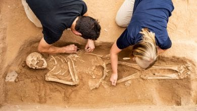 Photo of 聖經歷史是真的! 遠古遺骸DNA應證非利士人起源南歐