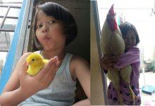 Photo of 改善兒童手機成癮症! 印尼試推「養小雞計畫」成效佳!