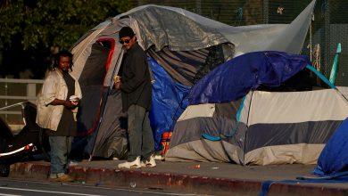 Photo of 加州街友達13萬 奧克蘭議員推「住郵輪」引爭議