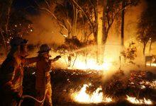 Photo of 澳洲祭出簽證延長政策 鼓勵「打工度假」協助森林大火災區重建