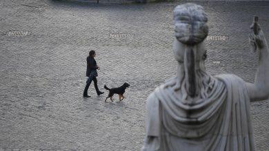 Photo of 封城還不停出門遛狗!義大利巿長開罵:你們的狗都有前列腺炎嗎?