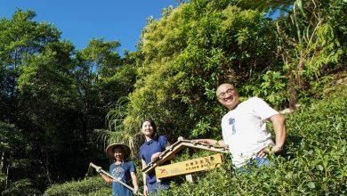 Photo of 我們賣的是理念! 「藍鵲茶」守護臺灣生態