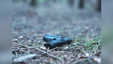 Photo of 悲!美5歲男童草叢撿到槍 誤當成玩具槍意外擊斃哥哥