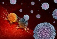 Photo of 新加坡新研發!「奈米粒子」讓癌細胞自殺 不用藥、無損健康細胞