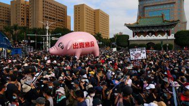 Photo of 風向觀點:講萊豬扯萊牛,農委會主委出現萊豬症候群?