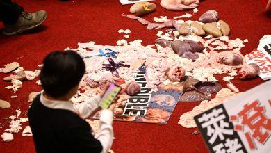 Photo of 藍丟豬內臟抗議萊豬  網讚「大腸花」:終於硬起來了