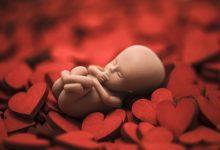 Photo of 有家暴問題懷孕卻不敢生    解慧珍:大人的問題為什麼用胎兒一條命來解決?