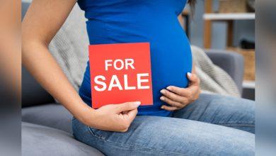 Photo of 【妳的子宮不是妳的 1】代理孕母=人口販運 俄羅斯政府逮捕男同伴侶